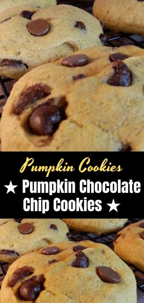 ★ Pumpkin Chocolate Chip Cookies ★ (1)